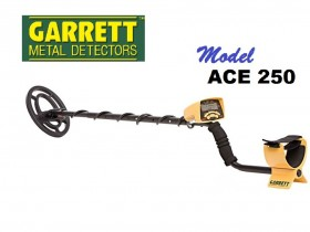 Ace 250 Metal Detector
